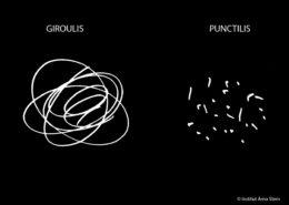 Arno Stern Formulation Giroulis Punctilis